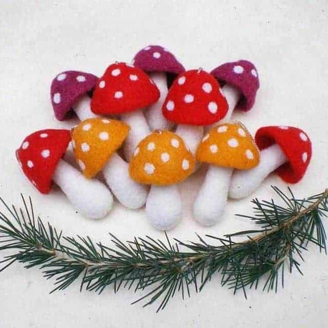 Mushroom grow kits for Christmas